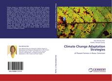 Bookcover of Climate Change Adaptation Strategies