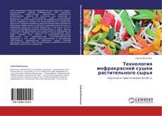 Bookcover of Технология инфракрасной сушки растительного сырья