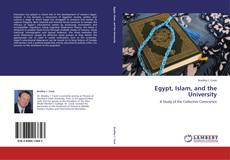 Bookcover of Egypt, Islam, and the University