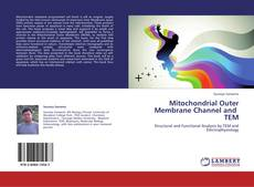 Couverture de Mitochondrial Outer Membrane Channel and   TEM