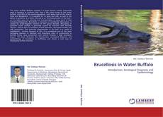 Brucellosis in Water Buffalo的封面