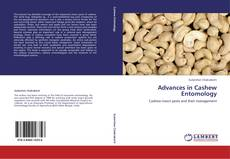 Bookcover of Advances in Cashew Entomology