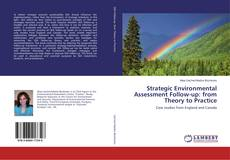 Bookcover of Strategic Environmental Assessment Follow-up: from Theory to Practice