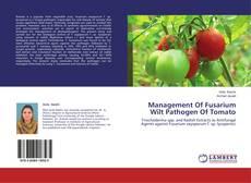 Capa do livro de Management Of Fusarium Wilt Pathogen Of Tomato