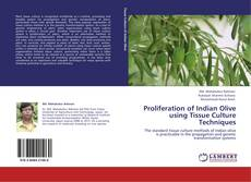 Bookcover of Proliferation of Indian Olive using Tissue Culture Techniques