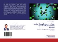 Обложка Metal Complexes of a New Tripodal Multidentate Ligand