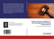 Public Interest Litigation in the Development of Prison Jurisprudence的封面