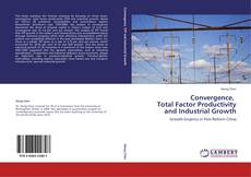 Bookcover of Convergence,   Total Factor Productivity  and Industrial Growth