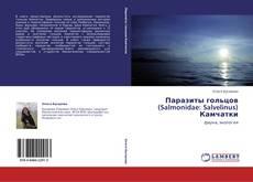 Bookcover of Паразиты гольцов (Salmonidae: Salvelinus) Камчатки