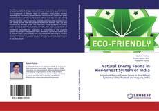 Copertina di Natural Enemy Fauna in Rice-Wheat System of India