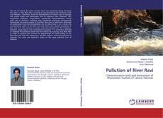 Pollution of River Ravi的封面