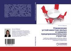 Bookcover of Управление устойчивостью малых и средних предпринимательских структур: