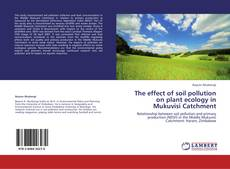 Portada del libro de The effect of soil pollution on plant ecology in Mukuvisi Catchment