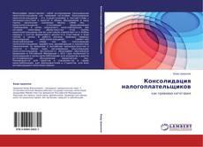 Bookcover of Консолидация налогоплательщиков