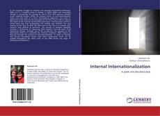 Internal Internationalization kitap kapağı