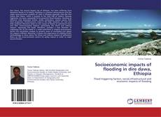 Capa do livro de Socioeconomic impacts of flooding in dire dawa, Ethiopia