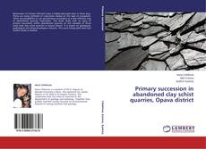 Bookcover of Primary succession in abandoned clay schist quarries, Opava district