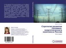 Стратегия развития топливно-энергетического комплекса России kitap kapağı