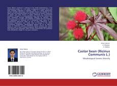 Capa do livro de Castor bean (Ricinus Communis L.)