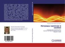 Bookcover of Нитриды кремния и ниобия
