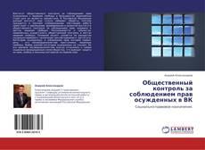 Общественный контроль за соблюдением прав осужденных в ВК kitap kapağı