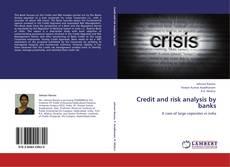 Copertina di Credit and risk analysis by banks