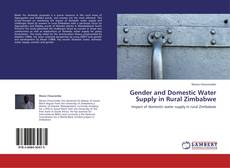 Borítókép a  Gender and Domestic Water Supply in Rural Zimbabwe - hoz