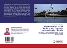 Bookcover of Development of Water Projects and Domestic Hydropolitics in Ethiopia