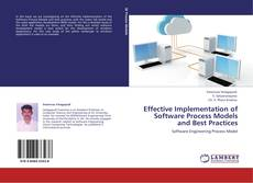 Bookcover of Effective Implementation of Software Process Models and Best Practices