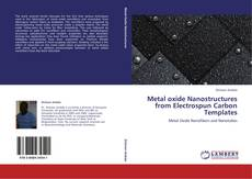 Couverture de Metal oxide Nanostructures from Electrospun Carbon Templates