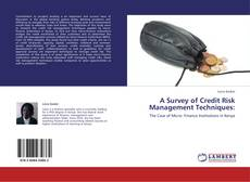 Bookcover of A Survey of Credit Risk Management Techniques: