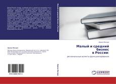 Малый и средний бизнес  в России: kitap kapağı