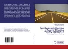 Semi-Parametric Modeling of Pavement Marking Visibility Degradation kitap kapağı