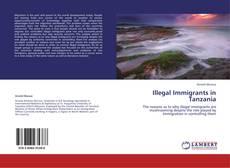 Bookcover of Illegal Immigrants in Tanzania