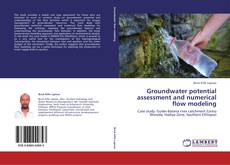 Bookcover of Groundwater potential assessment and numerical flow modeling