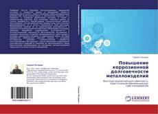 Повышение коррозионной долговечности металлоизделий kitap kapağı