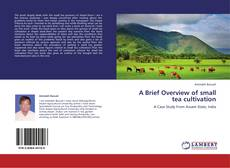 Buchcover von A Brief Overview of small tea cultivation