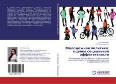 Buchcover von Молодежная политика: оценка социальной эффективности
