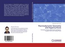 Bookcover of Thermodynamic Geometry and Hypersurfaces