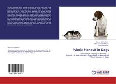 Pyloric Stenosis in Dogs的封面