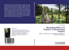 Bookcover of Managing Risks in IT Projects: e-Government Projects