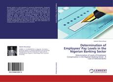 Bookcover of Determination of Employees' Pay Levels in the Nigerian Banking Sector