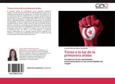 Обложка Túnez a la luz de la primavera árabe