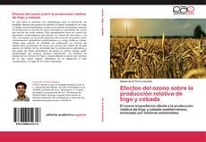 Couverture de Efectos del ozono sobre la producción relativa de trigo y cebada