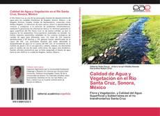 Copertina di Calidad de Agua y Vegetación en el Río Santa Cruz, Sonora, México