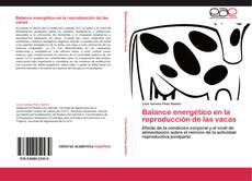 Bookcover of Balance energético en la reproducción de las vacas