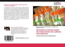 Borítókép a  Creación y conservación de colecciones de cultivos microbianos - hoz
