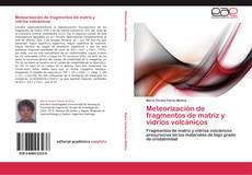 Bookcover of Meteorización de fragmentos de matriz y vidrios volcánicos