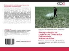 Portada del libro de Biodegradación de Lindano por Consorcios Definidos de Actinobacterias