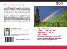 Fotoproducción de pigmentos por la microalga Haematococcus pluvialis的封面